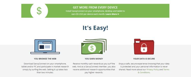 Screenshot from SurveySavvy - online surveys for money